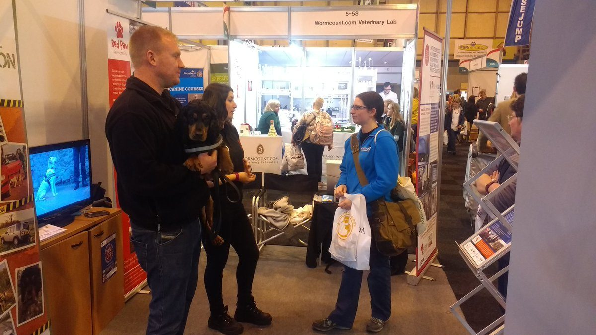 Rocky at Crufts